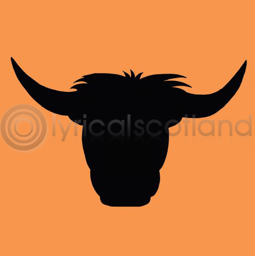 #highlandcow Colour Art Greetings Card