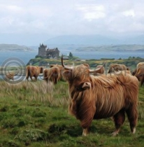 Highlanders At Duart Castle Colour Art Greetings Card