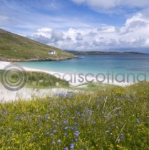 Vatersay, Outer Hebrides Colour Photo Greetings Card (LY)