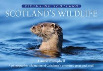 Picturing Scotland: Scotland's Wildlife