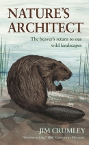 Nature's Architect: Beaver's Return