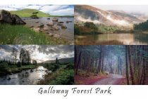 Galloway Forest Park Composite Postcard (HA6)