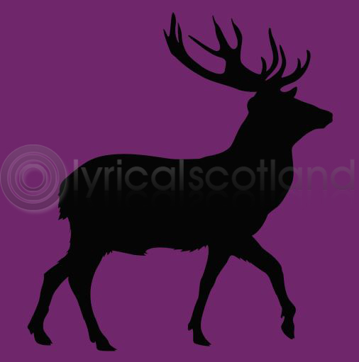 #stag Colour Art Greetings Card
