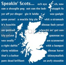 Speakin' Scots Icon Colour Art Greetings Card (LY)