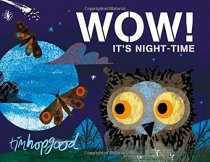 Wow! It's Nighttime Board Book