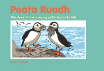 Peata Ruadh: How a Puffin Learned to Fish