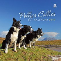 2019 Calendar Polly's Collies