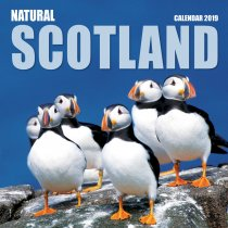 2019 Calendar Natural Scotland (2 for £6)
