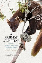 Richness of Martens, A (Jul)