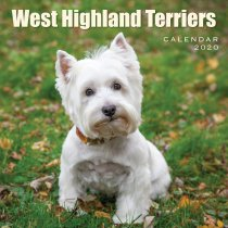 2020 Calendar West Highland Terriers (2 for 6v)