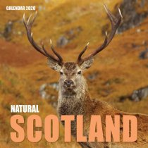 2020 Calendar Natural Scotland (2 for 6v)