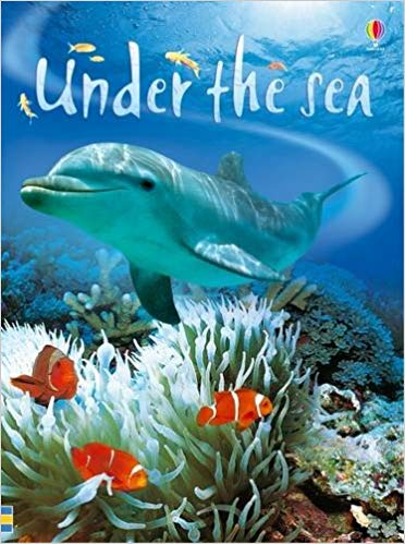 Beginners Under the Sea