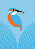I Like Birds: River, Estuary & Shore Journals