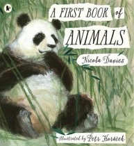 First Book of Animals, A