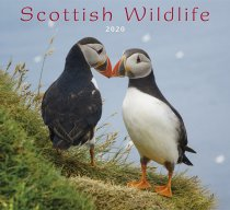 2020 Calendar Scottish Wildlife