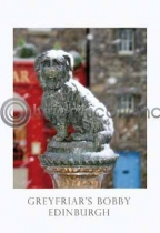 Greyfriars Bobby In Snow Postcard (VA6)