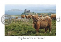 Windswept Highlanders at Duart Postcard (HA6)