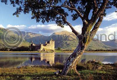 Kilchurn Castle & Tree (HA6)
