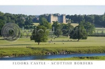 Floors Castle Postcard (H A6 LY)