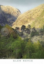 Glen Nevis - Fort William Postcard (VA6)