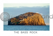 Bass Rock Postcard (H A6 LY)