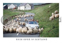 Rush Hour In Scotland Postcard (HA6)
