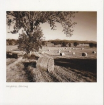 Hay Bales, Stirling Sepia Greetings Card