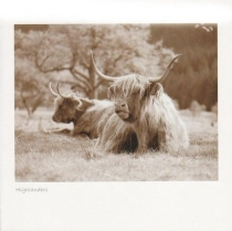 Highlanders - Glen Nevis Sepia Greetings Card (LY)