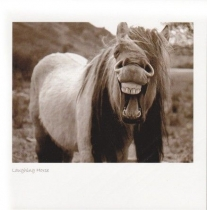 Laughing Horse Sepia Greetings Card (LY)