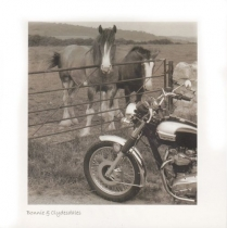 Bonnie & Clydesdales Sepia Greetings Card (LY)