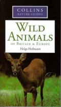 Collins Nature Guide - Wild Animals