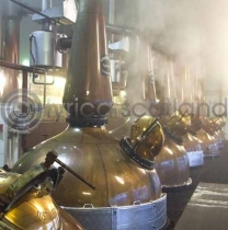 Malt Whisky Stills (Colour)
