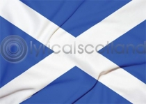 Saltire Flag Magnet (H LY)